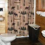 Cabin Bathroom